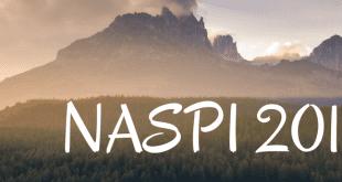 NASPI 2018