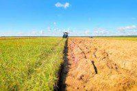 affitto terreni agricoli reddito tassazione