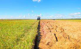 affitto terreni agricolo reddito tassazione