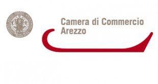 diritto camerale 2010 2011