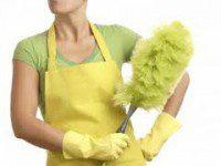 Calcolo TFR colf, badante, collaboratrice domestica, donna di servizio