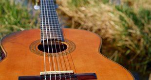 strumento musicale: chitarra