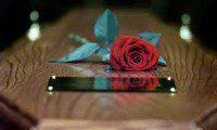 rosa sulla bara ( successione )